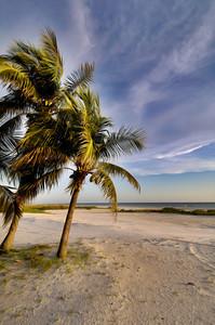 Beach 808 a