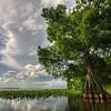 Lake Istokpoga :